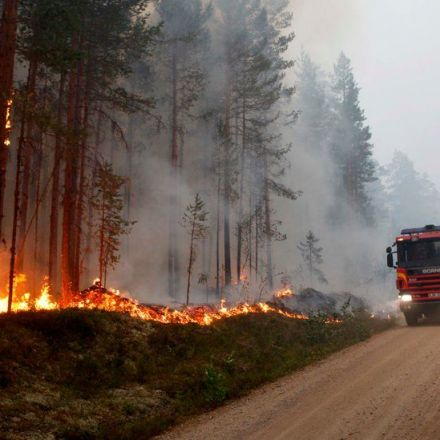 Heat Wave Scorches Sweden as Wildfires Rage in the Arctic Circle