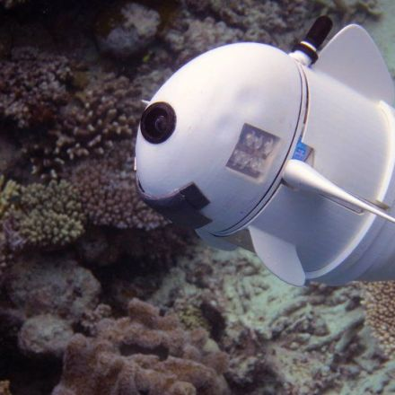 Robotic Fish to Keep a Fishy Eye on the Health of the Oceans