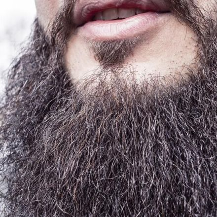 Men's beards are dirtier than dogs' fur, study says