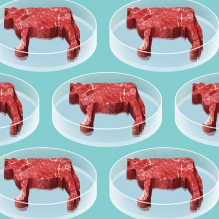 Dozens of companies are betting on lab-grown meat, but none know how to get you to eat it