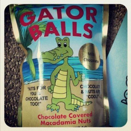 Gator attacks man diving for balls at Florida golf course