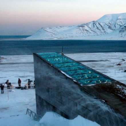 What it's like inside the doomsday vault that stores every known crop on the planet
