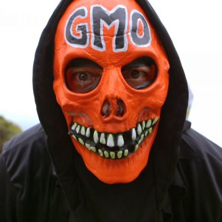 Once and for all, here's what science says about GMOs