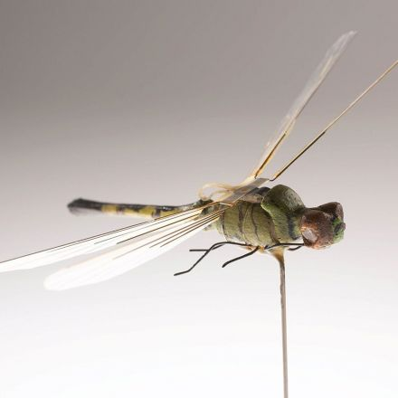 Meet the CIA's insectothopter.