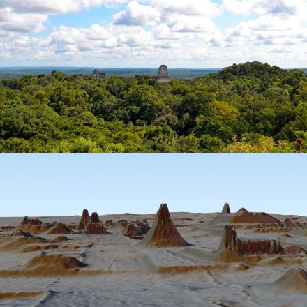 The Lost World of the Maya is Finally Emerging From the Jungle