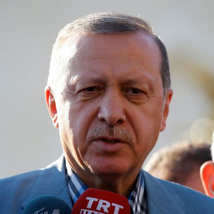 Erdogan says Germany is 'committing suicide'