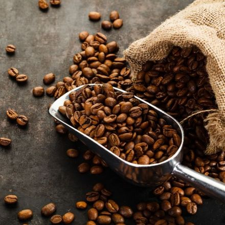 Over 60 Percent of Wild Coffee Species Are at Risk of Extinction
