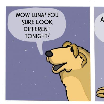 Good Night Moon.