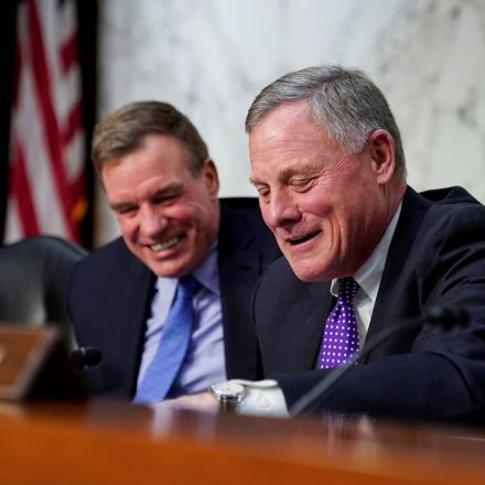 No direct evidence of Russia collusion with Trump, Senate investigation finds