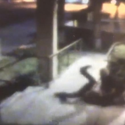 Footage captures woman forced to fight off sex attacker while passers by ignore her