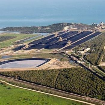 'Mockery': Turnbull government quietly cuts Adani's Abbot Point turtle controls