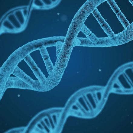 Genetic ancestry test users 'cherry-pick' which races to identify with