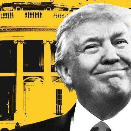 International Travel to the U.S. Sees Double-Digit Decline Under Trump