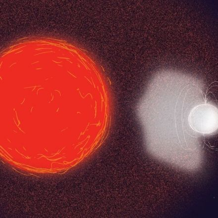 Red giant brings its companion star back to life