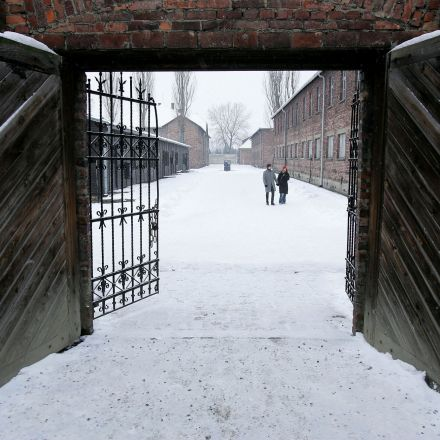 Holocaust Paradox: Long Lives for Those Who Survived