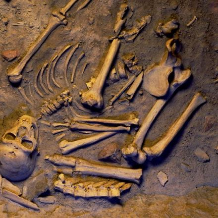 Deep in Human DNA, a Gift From the Neanderthals