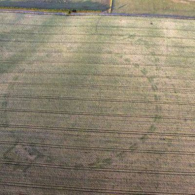 Crop circle reveals ancient 'henge' monument buried in Ireland
