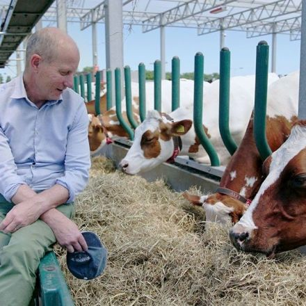 The World's First Floating Dairy Farm