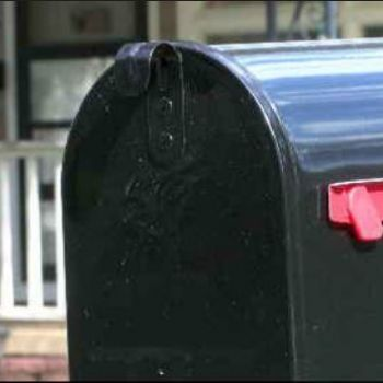 Mail carrier arrested for feeding dog meatballs with nails