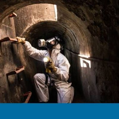Pioneering study finds more than 200,000 rats in Barcelona's sewers