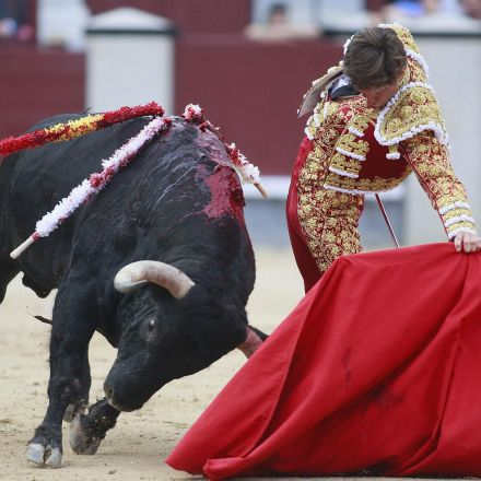 Spanish province to ban bullfighting, defying Madrid's conservative government