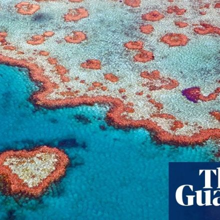 Great Barrier Reef outlook now 'very poor', Australian government review says