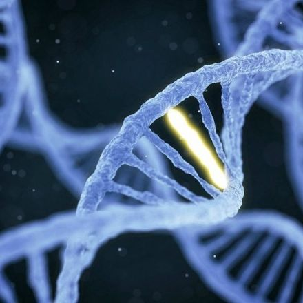 AI shown to successfully predict changes in DNA