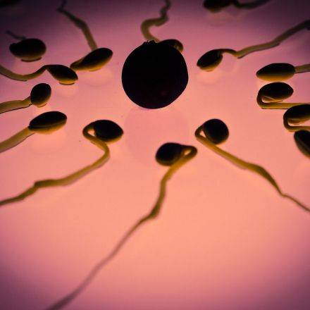Inside the renewed search for a male contraceptive pill