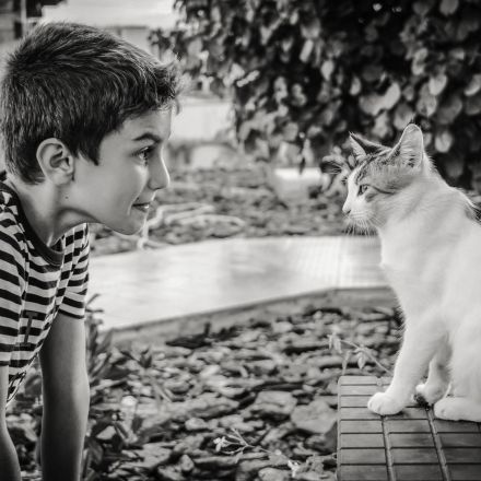 Do Children With Cats Have More Mental Health Problems?