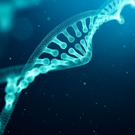 'Key player' identified in genetic link to psychiatric conditions