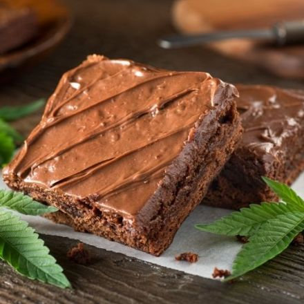 Health risks of eating marijuana edibles subject of study on mice