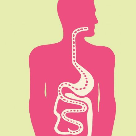 Is your gut making you sick?