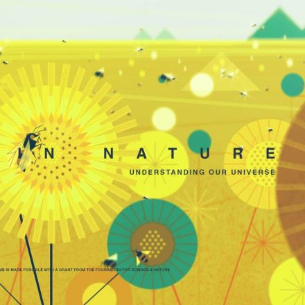 FORMS IN NATURE: Understanding Our Universe