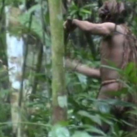 Last of his tribe? Brazil releases video of lonely man of the Amazon
