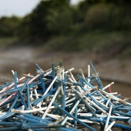 European Parliament to act on single use plastic pollution