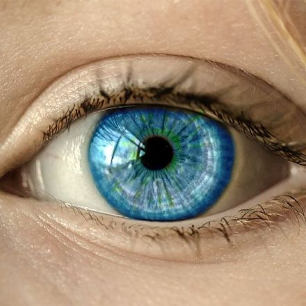 Newly Developed Nanowire Retinal Prosthesis Could Restore Sight to the Blind