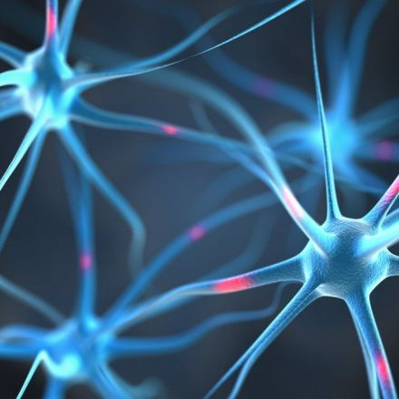Swedish Scientists Build Artificial Neurons Able to Communicate With Organic Neurons