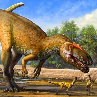 Dinosaurs Were Warm-Blooded, Scientist Suggests