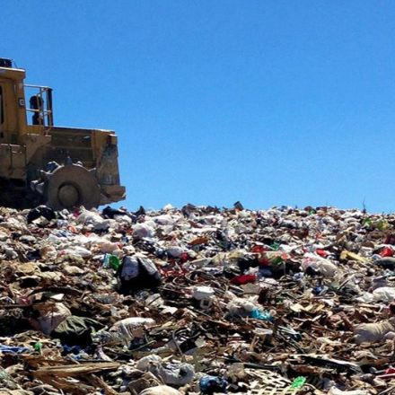 Plastic-degrading fungus found in Pakistan trash dump