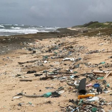 Scientists Just Discovered an Entirely New Reason for Banning Plastics