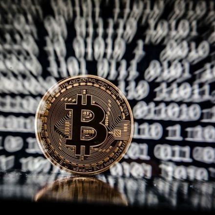 Wipeout: Bitcoin and Other Digital Currencies in Price Collapse