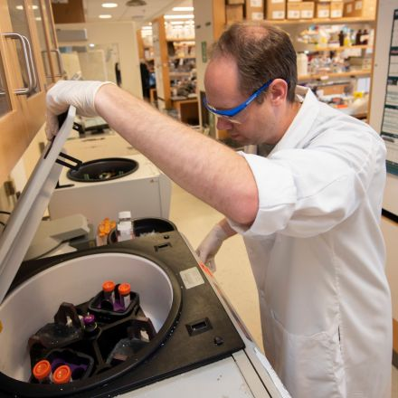UM stem cell research lifts hope for Alzheimer's patients