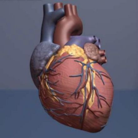 A first: Drug lowers heart risks by curbing inflammation