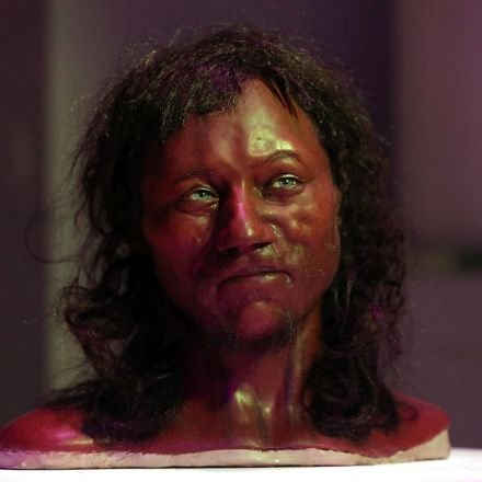 First modern Briton had 'dark to black' skin, DNA research reveals