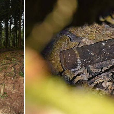 this red zone in france is so dangerous 100 years after wwi it