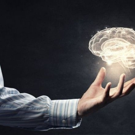 Here's What 'Free Will' Looks Like in Your Brain