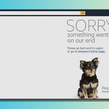 WTH Amazon!? Prime Day goes to the dogs