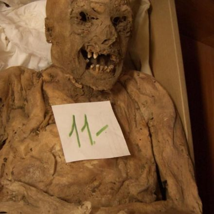 Mutated gene associated with colon cancer discovered in 18th-century Hungarian mummy