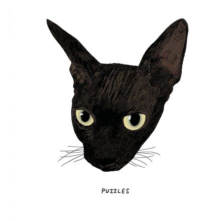 "An Illustrated Study of Black Cats, the ""Little Aliens"" of the Feline World"