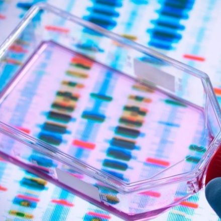 Geneticists retract study suggesting first CRISPR babies might die early